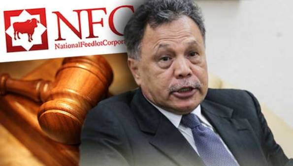 Image result for NFC's Chairman Datuk Dr Mohamad Salleh Ismail