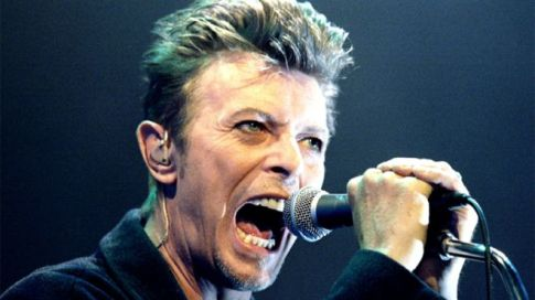 _87598346_bowie